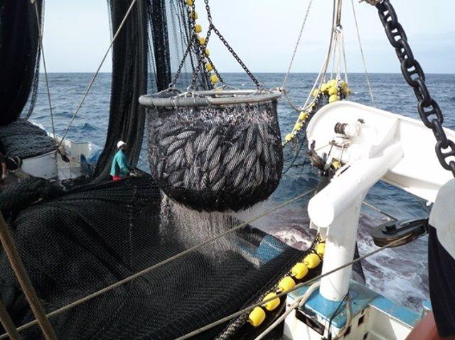 Barco atunero de pesca
