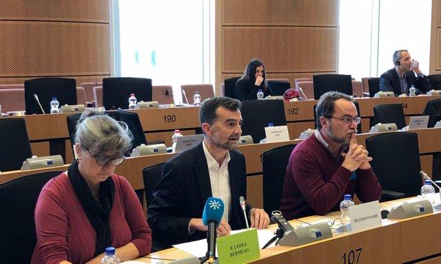Antonio Maíllo interviene en el Parlamento Europeo por el gasoducto en Doñ