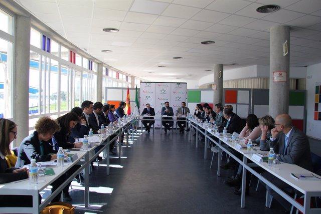 Reunión del Pleno del Consejo Andaluz de Deporte (CAD).