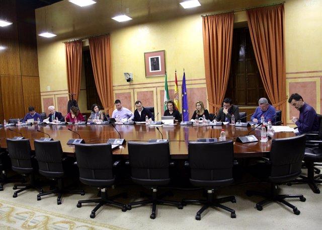 Última sesión del grupo de trabajo sobre financiación en el Parlamento