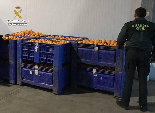 """Remitiendo Np Opc Huelva """"La Guardia Civil Interviene Más De 2.000 Kilos De Nara"""
