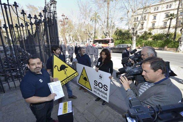 Presentación de las firmas recogidas por WWF contra el almacén de gas en Doñana