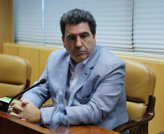 Marta JaraEl empresario David Marjaliza, presunto cerebro de la trama 'Púnica'