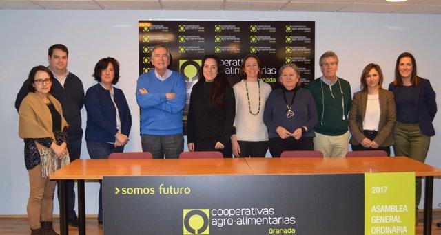 Grupo operativo para frenar la erosión en los suelos del olivar