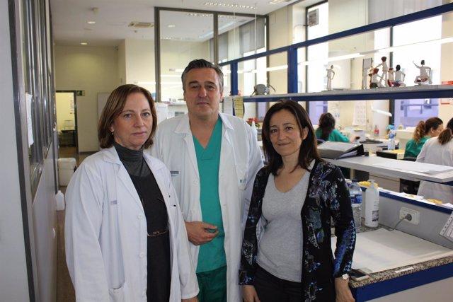 Los investigadores de la UPV que han participado en el desarrollo