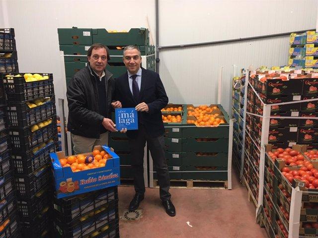 Elías Bendodo entrega al mayorista de frutas Adamo la placa de Sabor a Málaga