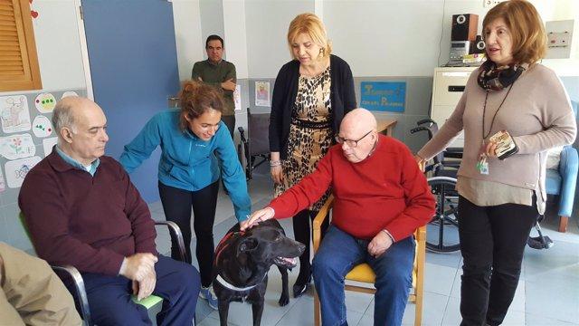 Foto/ La Consejera De Familia E Igualdad De Oportunidades Visitó Hoy La Residenc