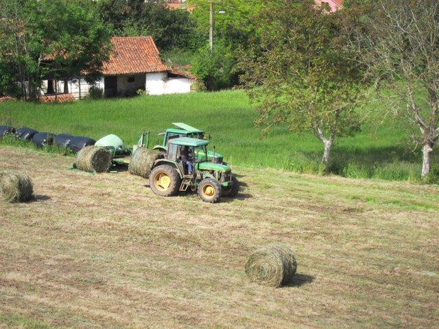 Imagen de archivo del campo asturiano, Política Agraria Común, PAC