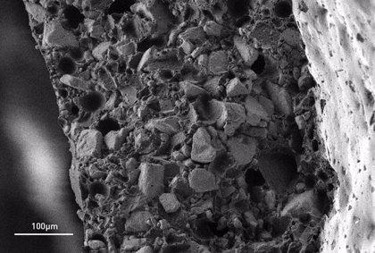 Crean implantes con materiales biocompatibles que podrían regenerar el nervio ciático