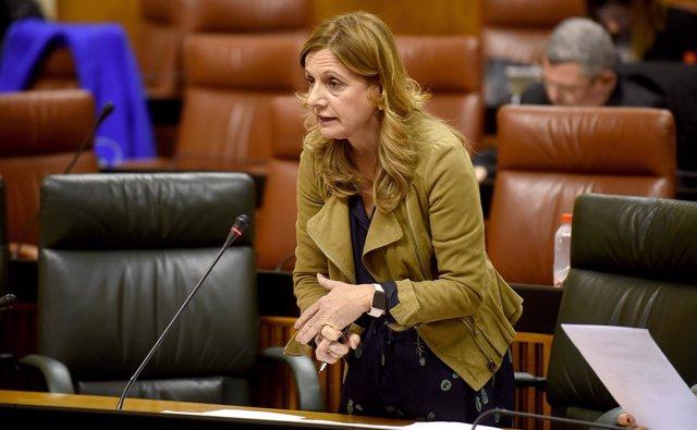 La consejera de Salud en el Pleno del Parlamento