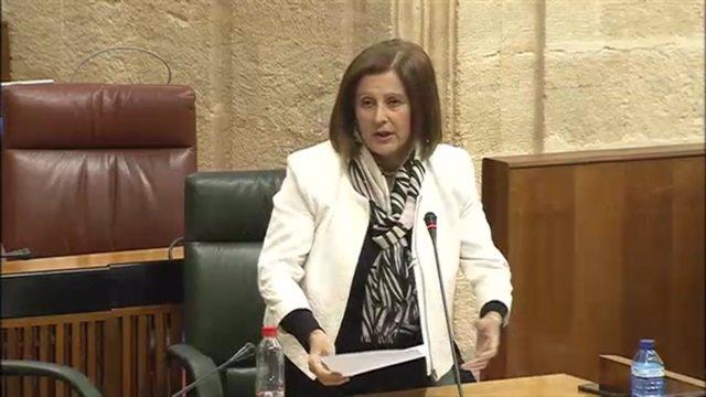 Sánchez Rubio en el Parlamento