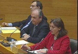 Ripoll en la Comisión de Les Corts sobre las instituciones feriales
