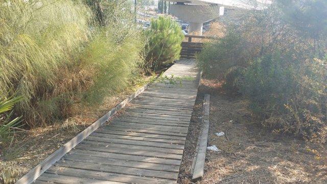 Una de las rampas del parque Osset