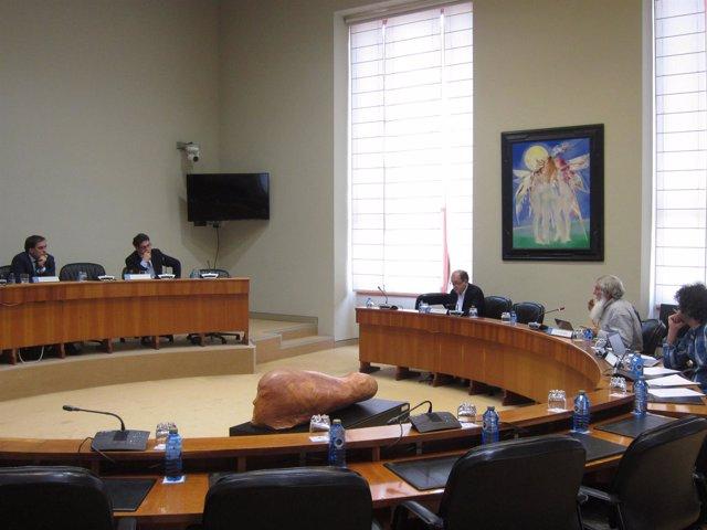 Tomás Fernández Couto En La Comisión De Incendios