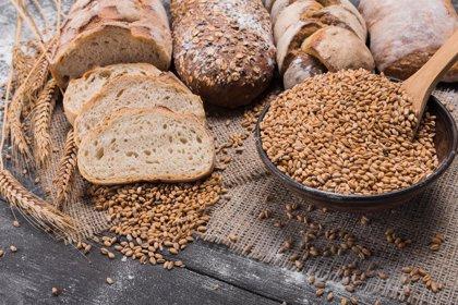 Sólo un 35% de los panes integrales está elaborado totalmente con harina integral, según un estudio de la UVA
