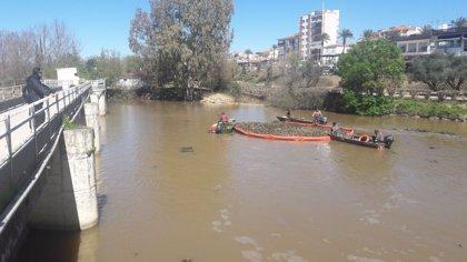 La conservación y mejora del río Guadiana afectado por camalote en la provincia de Badajoz se licitará por 4,1 millones