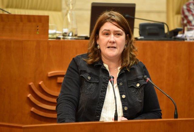 María Teresa Macías, diputada del PSOE
