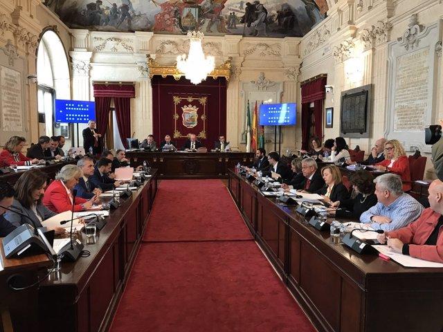 Pleno de Málaga. Marzo 2018