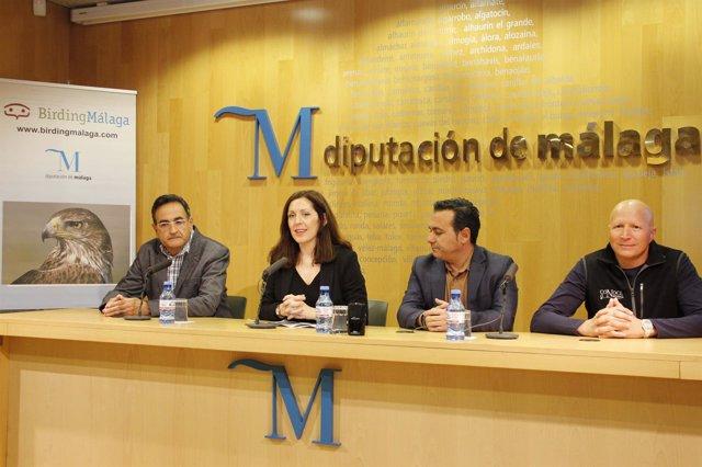 Marina Bravo Diputación de Málaga