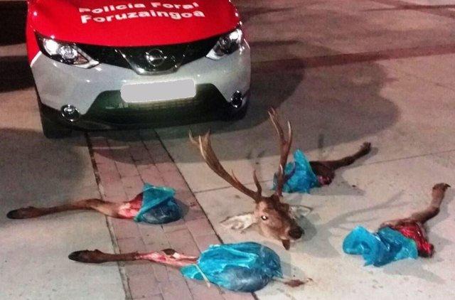 Ciervo cuarteado incautado en Huarte