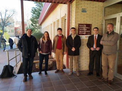Representantes de centros europeos de investigación en trufas y setas se reúnen en el CITA