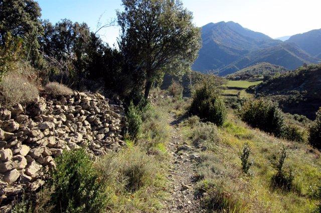 Camino de San Úrbez.