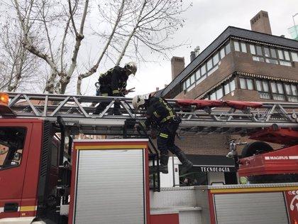 Bomberos de la Comunidad realizan más de 500 intervenciones por el viento mientras que los de Madrid alcanzan las 160