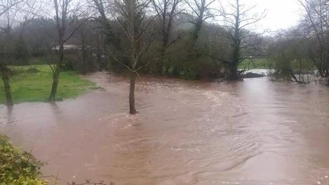 Imagen del río Linares.