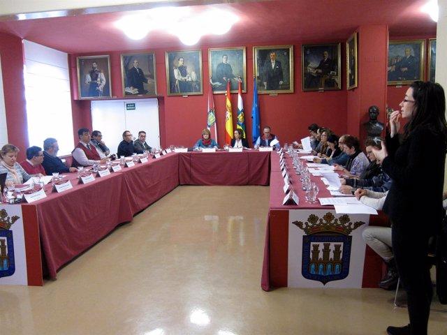 Imagen del Consejo, con la intérprete de signos