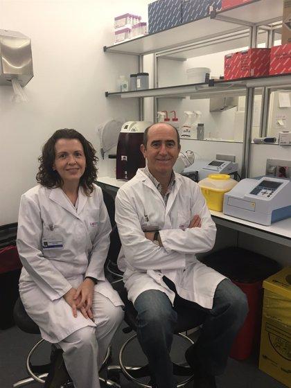 Hallan alteraciones asociadas a pérdida del control inmunológico en pacientes VIH 'controladores de élite'