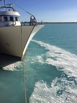 Espuma y tonalidad turquesa de las aguas en la zona portuaria de Huelva