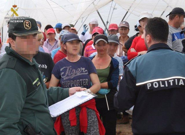 Guardia Civil y Policía de Rumania contra trata de personas para abuso laboral