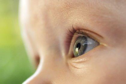 De la claridad a los objetos, ¿qué ven los ojos de tu bebé?