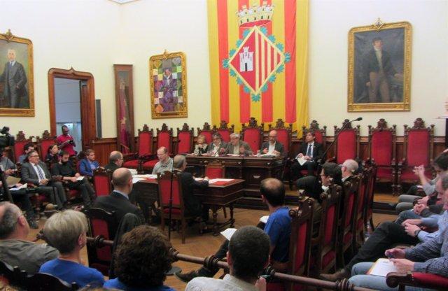 Pleno de Terrassa celebrado este jueves 22 de marzo (Foto de archivo)