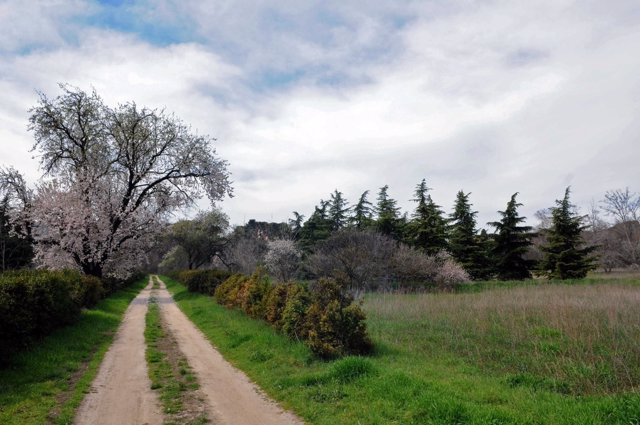 Quinta de Torre Arias