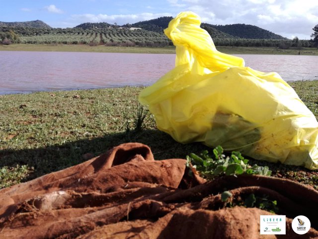 Basuraleza recogida en ríos por la campaña LIBERA de SEO/BirdLife y Ecoembes