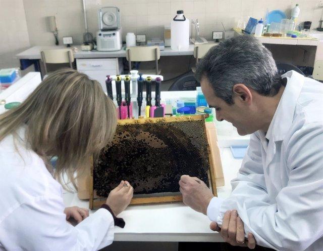 C. Sara Hernández y Joel González, en la Facultad de Ciencias Biológicas