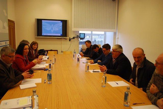 Reunión de Xunta y alcaldes de A Costa da Morte sobre la plaga de la patata