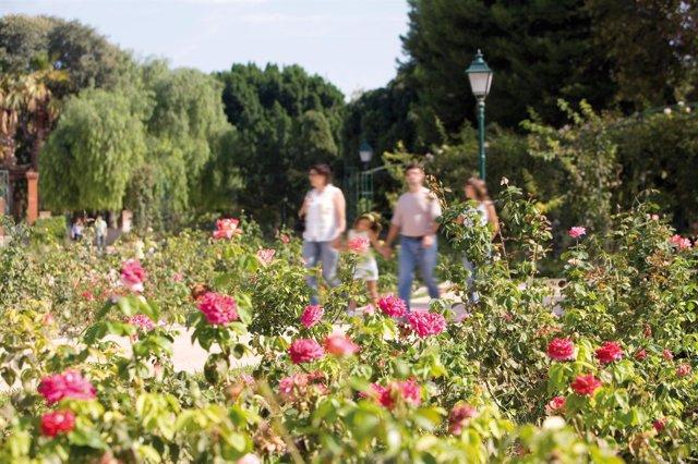 Jardines De Viveros En Valencia