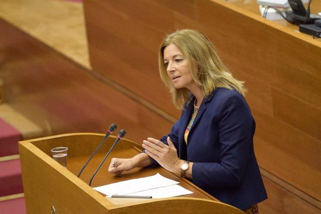 La diputada socialista Concha Andrés