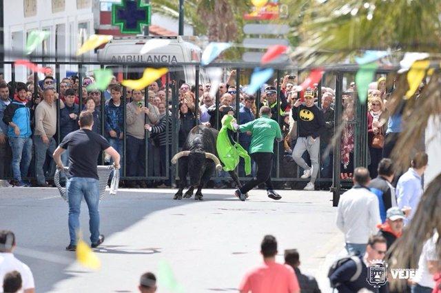 Fiesta del Toro Embolao en Vejer de la Frontera