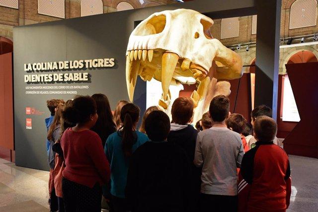 Nota Y Foto: El Museo Arqueológico Regional Organiza Talleres Infantiles Sobre L