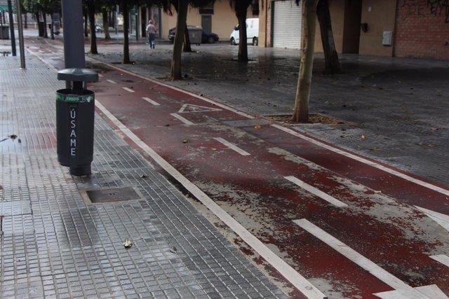 Papelera, Basura, calle, carril bici, lluvia, mojado, bicicleta