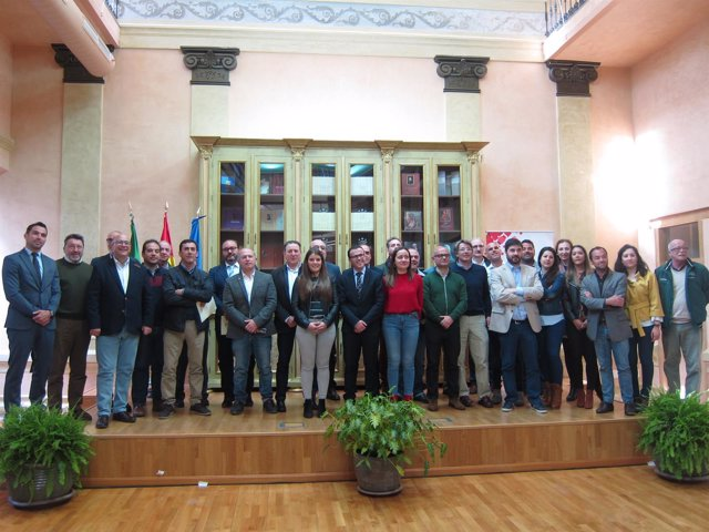Diputación Y Federaciones Deportivas
