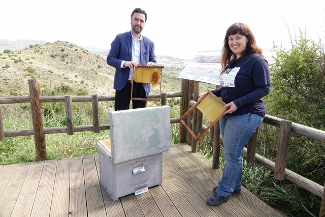 Raúl Jiménez abejas