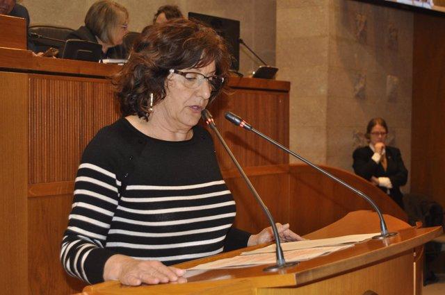 María Victoria Broto ha explicado hoy el texto de la Ley de Igualdad LGTBI