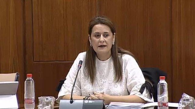 La consejera de Educación en comisión parlamentaria