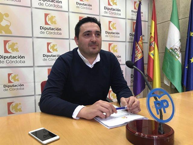 José María Estepa en la Diputación