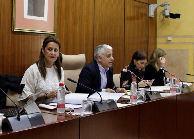 Sonia Gaya en la Comisión de Educación