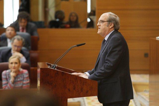 Gabilondo durante su intervención en el Pleno de la Asamblea